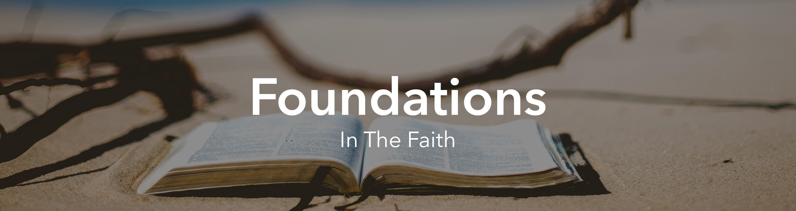 New Believers (Foundations in the Faith)